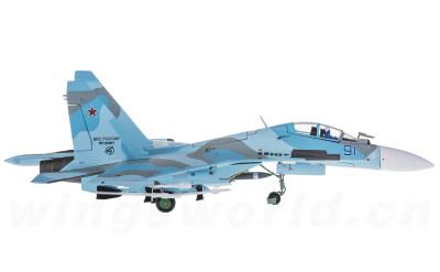 俄罗斯空军 Sukhoi Su-30 91