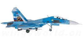 俄罗斯空军 Sukhoi Su-27UB 43